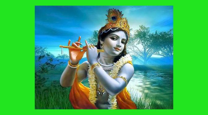 (Italiano) Il libro di Krishna
