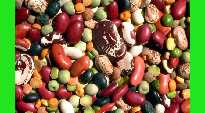 (Italiano) Le fonti vegetali di proteine