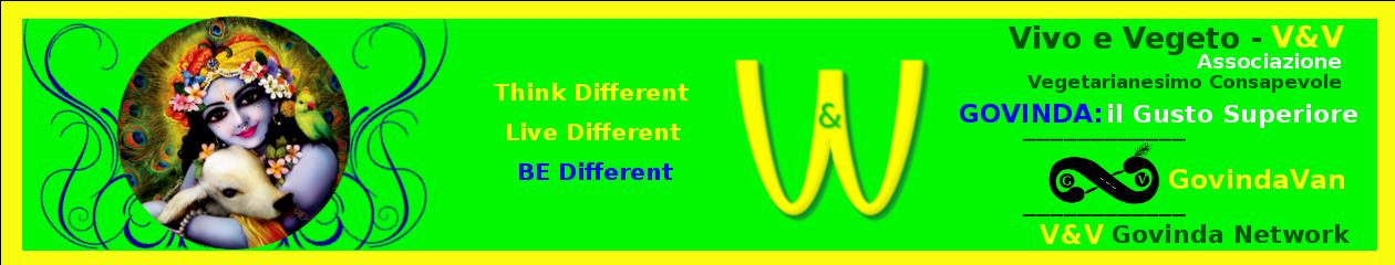 VIVOeVEGETO – V&V